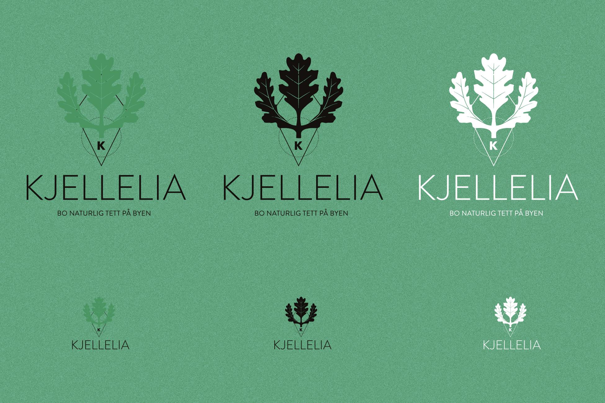 Logo og visuell identitet