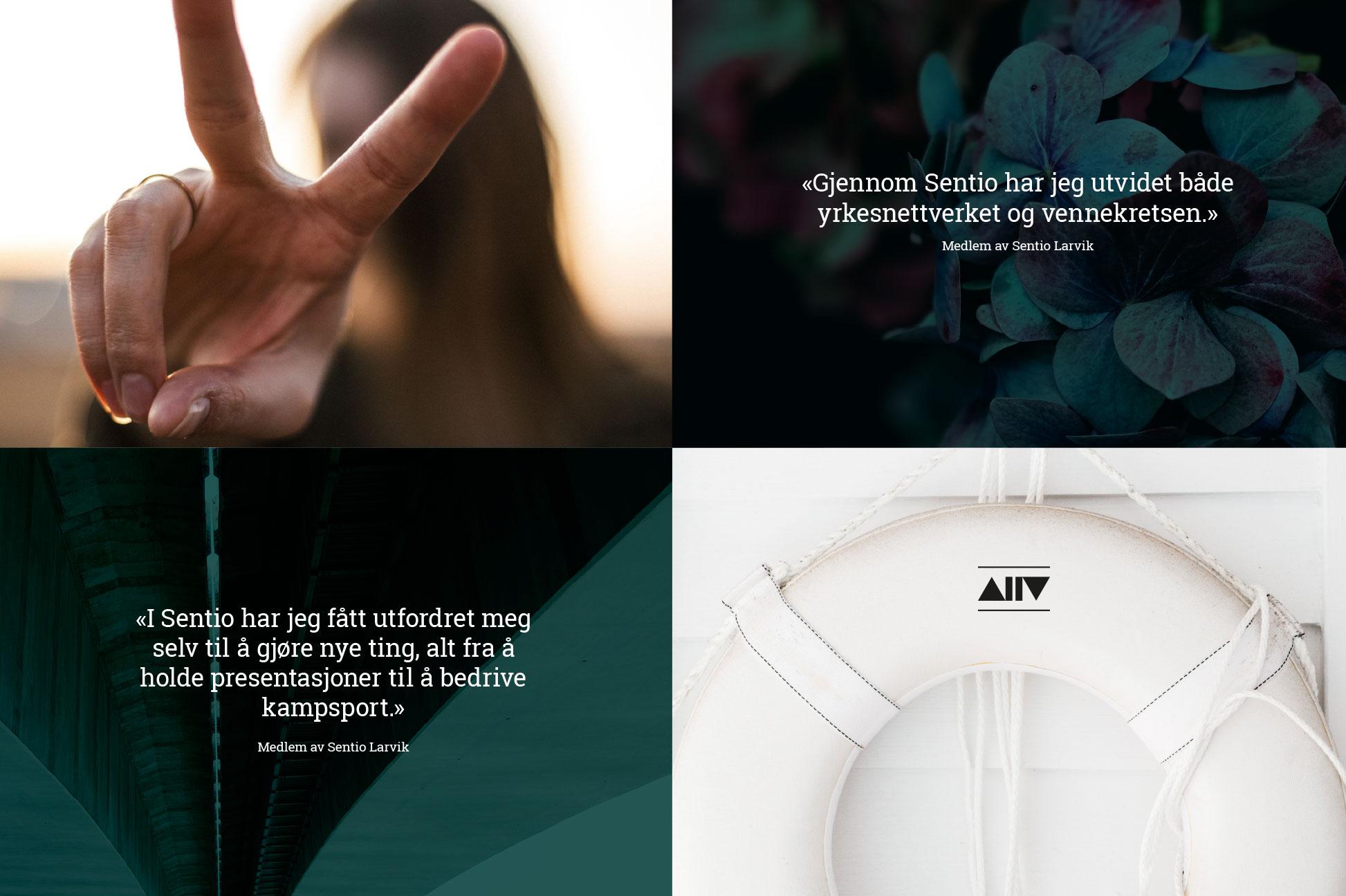 Logo, identitet og webside
